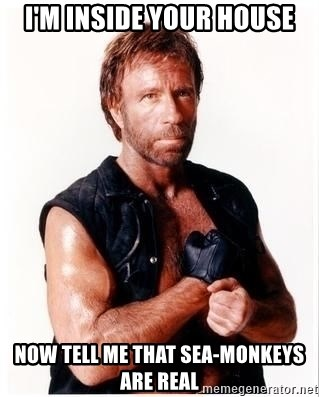 Chuck Norris Meme - I'm inside your house now tell me that sea-monkeys are real