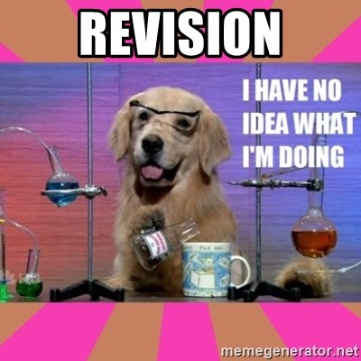 I have no idea what I'm doing dog - revision