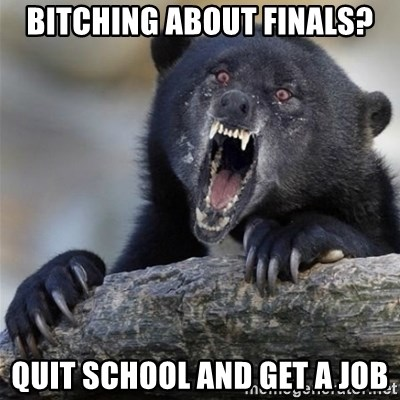 Insane Confession Bear - Bitching about finals? quit school and get a job