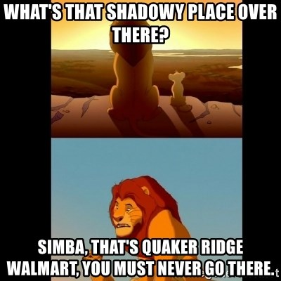 Lion King Shadowy Place - What's that shadowy place over there? Simba, That's Quaker ridge walmart, you must never go there.