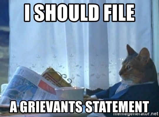 Sophisticated Cat - i should file  a grievants statement