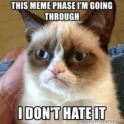 Grumpy Cat  - THIS MEME PHASE I'M GOING THROUGH I DON'T HATE IT