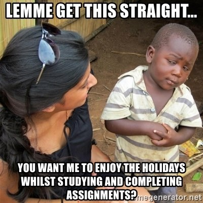 So You're Telling me - LEMME GET THIS STRAIGHT... YOU WANT ME TO ENJOY THE HOLIDAYS WHILST STUDYING AND COMPLETING ASSIGNMENTS?