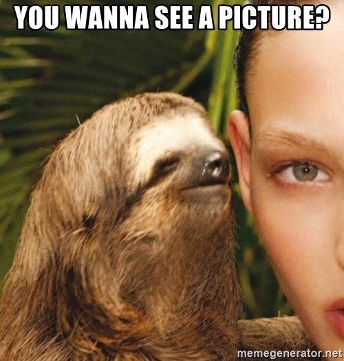The Rape Sloth - you wanna see a picture?