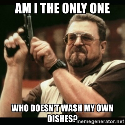 am i the only one around here - Am I the only one Who DOESN'T wash my Own dishes?