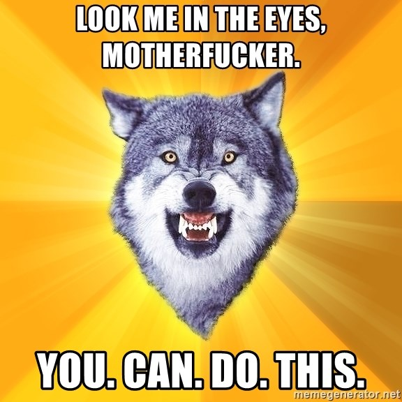 Courage Wolf - look me in the eyes, motherfucker. you. can. do. this.