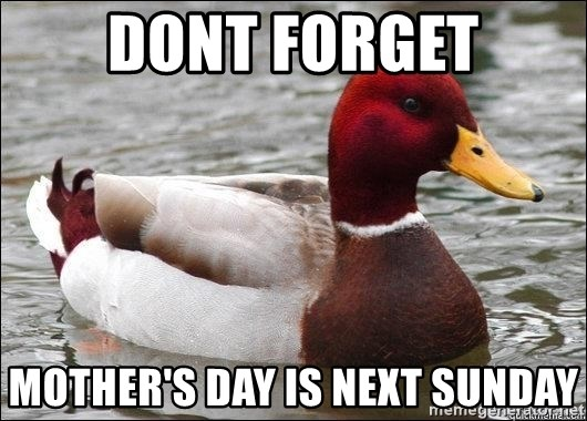 Malicious advice mallard - dont forget mother's day is next sunday