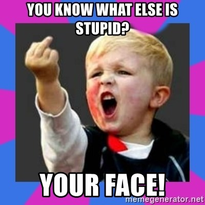 Kid middle finger - YOU KNOW WHAT ELSE IS STUPID? YOUR FACE!