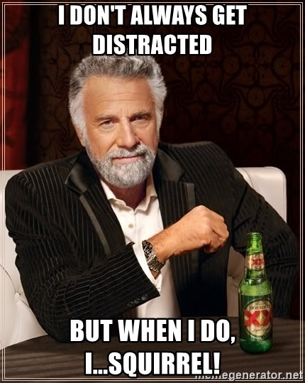 The Most Interesting Man In The World - i don't always get distracted but when i do, i...squirrel!