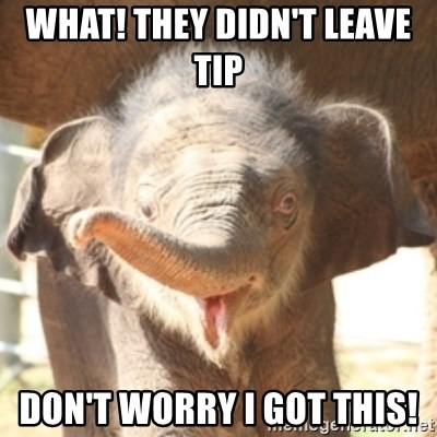 baby elephant - What! They didn't Leave tIp  Don't worry I got this!