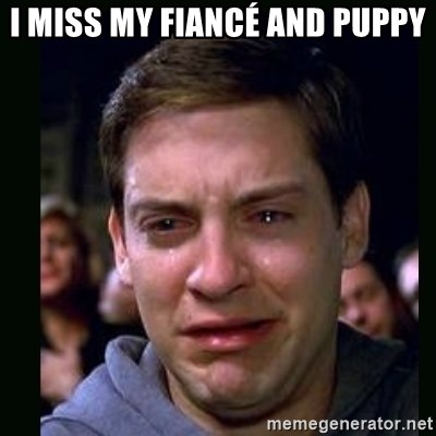 crying peter parker - I MISS MY FIANCÉ AND PUPPY