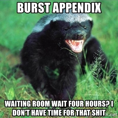 Honey Badger Actual - Burst appendix waiting room wait four hours? I don't have time for that shit