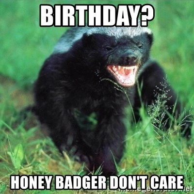 Honey Badger Actual - BIRTHDAY? HONEY BADGER DON'T CARE