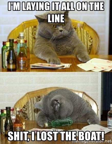 Poker Cat - I'm laying it all on the line SHIT, I lost the boat!