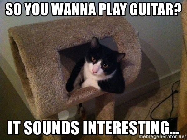 cool cat - so you wanna play guitar? it sounds interesting...