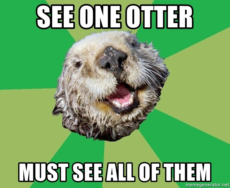 Ocd Otter - See one otter Must see all of them
