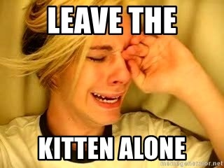 leave britney alone - Leave the Kitten alone