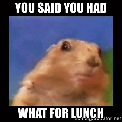 Dafuq? Chipmonk - YOU SAID YOU HAD WHAT FOR LUNCH