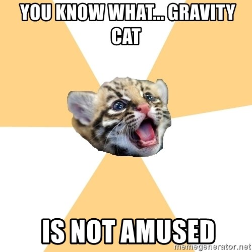 facebook roleplay ocelot -  you know what... gravity cat  is not amused