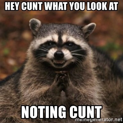 evil raccoon - HEY CUNT WHAT YOU LOOK AT NOTING CUNT
