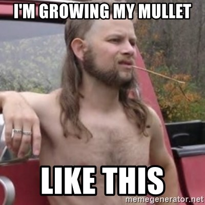 Stereotypical Redneck - I'M GROWING MY MULLET  LIKE THIS