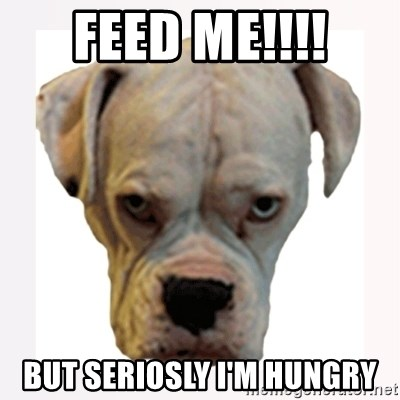 stahp guise - FEED ME!!!! BUT SERIOSLY I'M HUNGRY