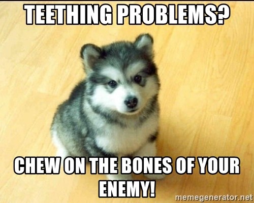 Baby Courage Wolf - teething problems?  chew on the bones of your enemy!