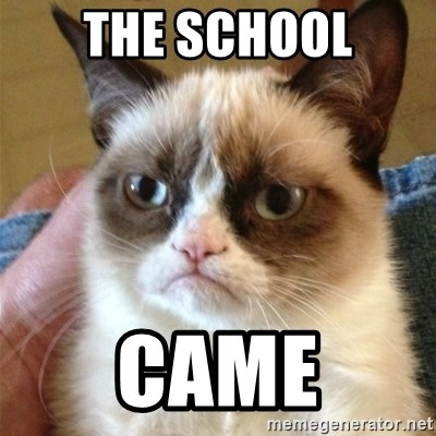 Grumpy Cat  - THE SCHOOL CAME