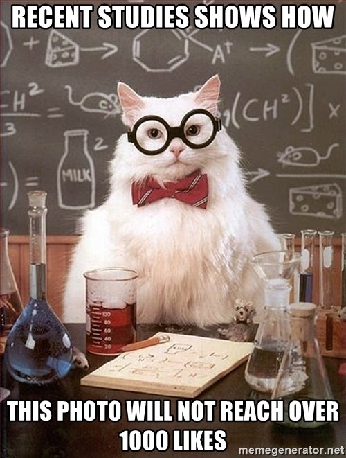 Science Cat - RECENT STUDIES SHOWS HOW THIS PHOTO WILL NOT REACH OVER 1000 LIKES