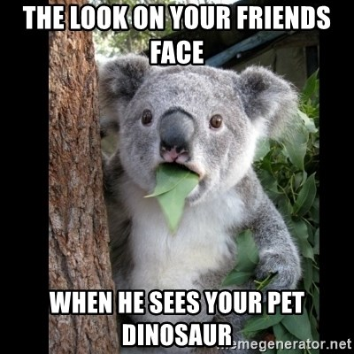 Koala can't believe it - THE LOOK ON YOUR FRIENDS FACE WHEN HE SEES YOUR PET DINOSAUR