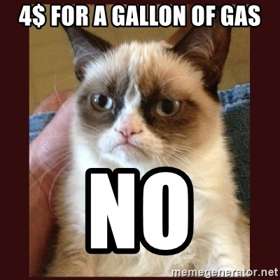 Tard the Grumpy Cat - 4$ FOR A GALLON OF GAS No