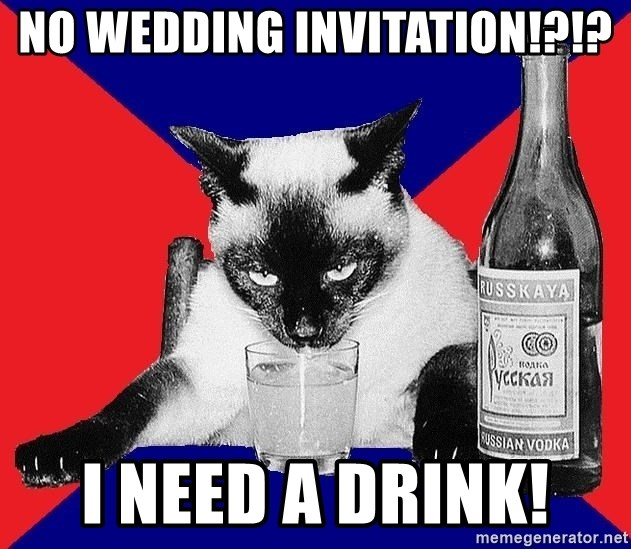 Alco-cat - NO WEDDING INVITATION!?!? I NEED A DRINK!