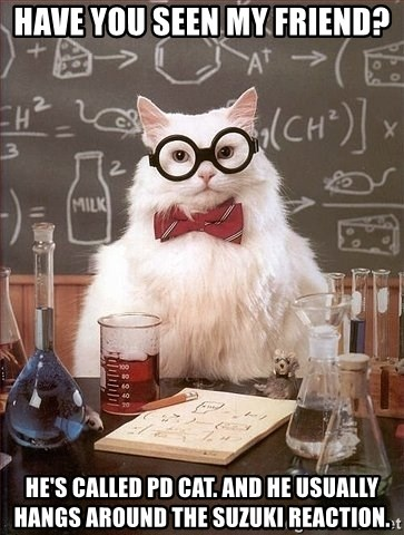Chemistry Cat - Have you seen my friend? He's called pd cat. and he usually hangs around the suzuki reaction.