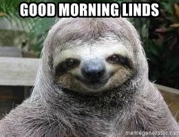 Sexual Sloth - GOod morning linds
