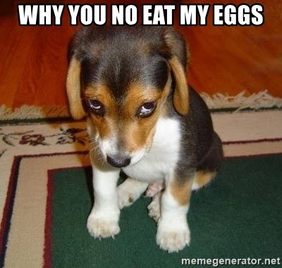 Sad Puppy - Why you no eat my eggs