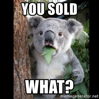 Koala can't believe it - you sold what?