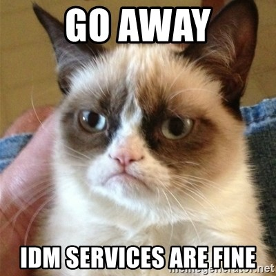 Grumpy Cat  - Go away IDM services are fine