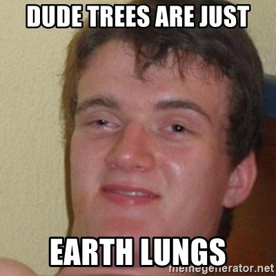 really high guy - DUDE TREES ARE JUST EARTH LUNGS