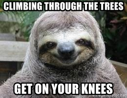 Sexual Sloth - Climbing through the trees Get on your knees