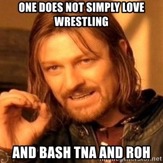 One Does Not Simply - One does not simply love wrestling and bash TNA and ROH