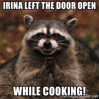 evil raccoon - IrinA left the door open  While cooking!