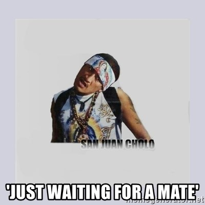 san juan cholo -  'JUST WAITING FOR A MATE'
