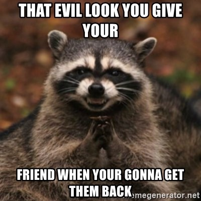 evil raccoon - THAT EVIL LOOK YOU GIVE YOUR  FRIEND WHEN YOUR GONNA GET THEM BACK