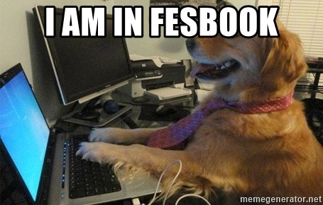 I have no idea what I'm doing - Dog with Tie - I AM IN FESBOOK