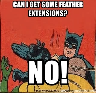 batman slap robin - Can I get some feather extensions? No!