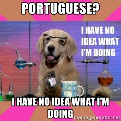 I have no idea what I'm doing dog - Portuguese? I have no idea what i'm doing