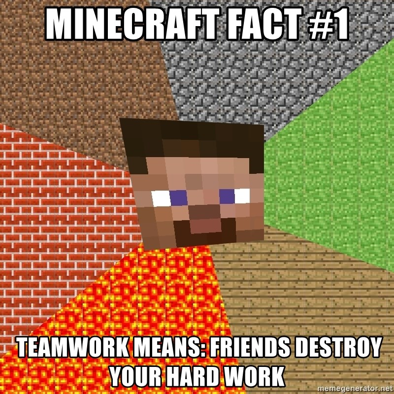 Minecraft Guy - Minecraft Fact #1  Teamwork means: Friends destroy your hard work