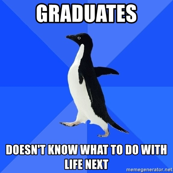 Socially Awkward Penguin - Graduates doesn't know what to do with life next