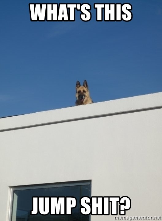 Roof Dog - what's this jump shit?