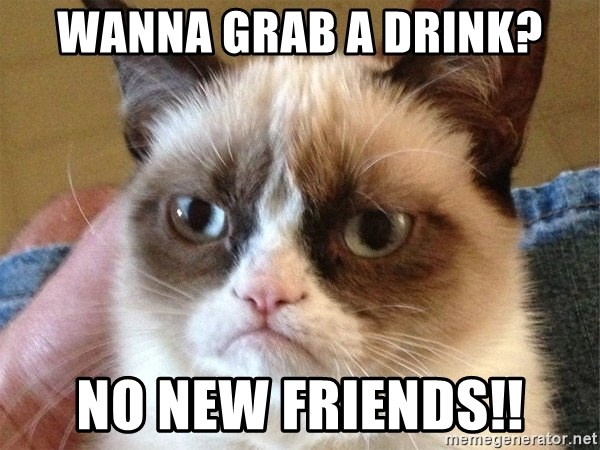 Angry Cat Meme - wanna grab a drink? NO NEW FRIENDS!!